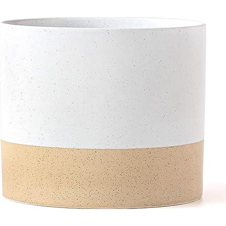 Minimalist Ceramic White /'Circle of Life/' Hands Planter Plant Pot