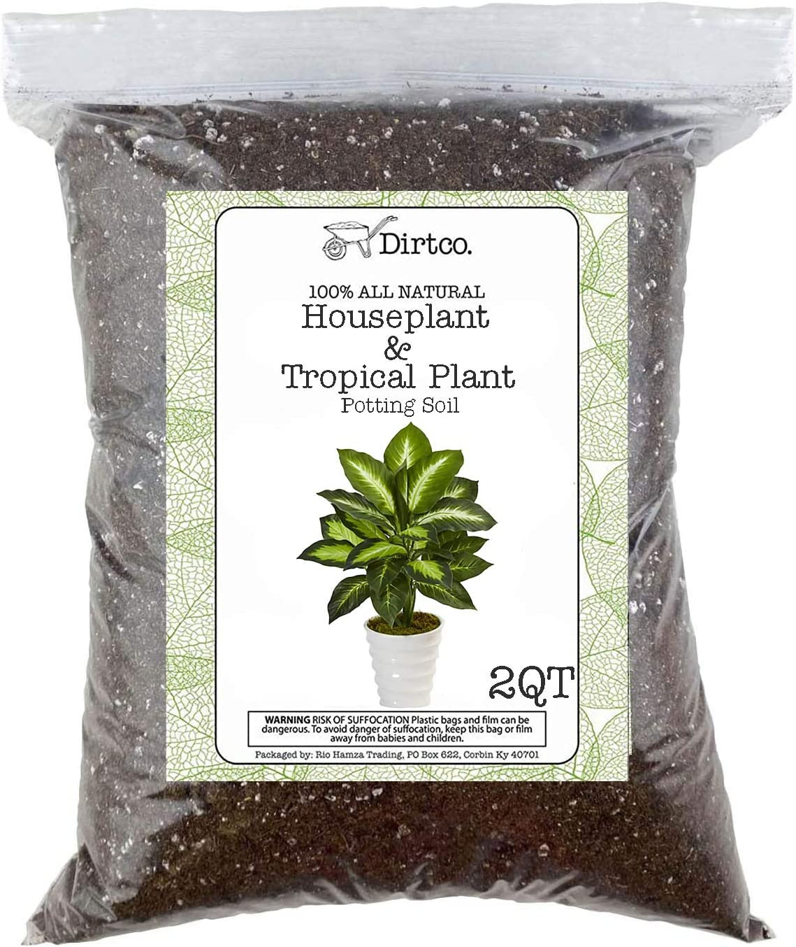 half House Plant and Las Vegas Mall Tropical Potting for Soil Re-Potting
