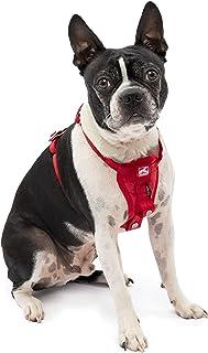 Kurgo Tru-Fit Crash Tested Dog Harness, Enhanced Strength Dog Vest, Dog Safety Harness with Pet Seat Belt Tether for Car, ...