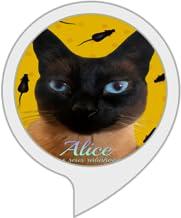 Alice Morcega