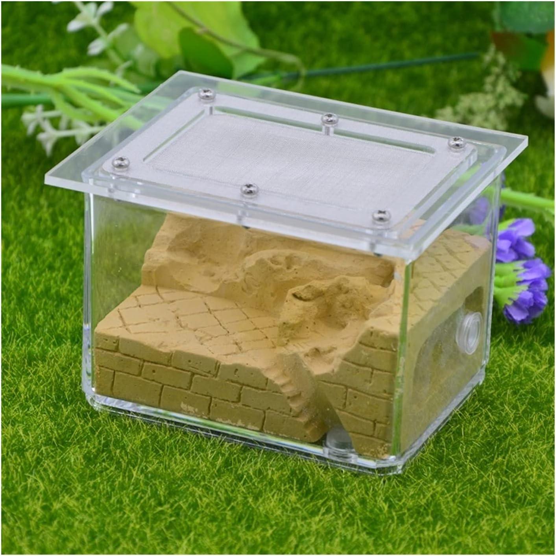 Ant wholesale Farm Formicarium Plastic High quality Transparent Ho Breeding Habitat