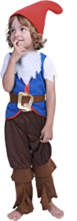 Best kids gnome costume Reviews