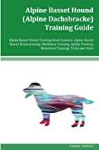 Best alpine training shorts Reviews