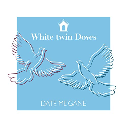 White twin Doves