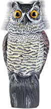 Best battery operated owl decoy Reviews