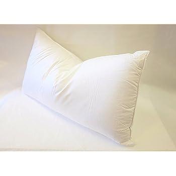 East Coast Bedding European 800 Fill Power White Goose Down Pillow. (King)