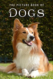 The Picture Book of Dogs: A Gift Book for Alzheimer's Patients and Seniors with Dementia: 8