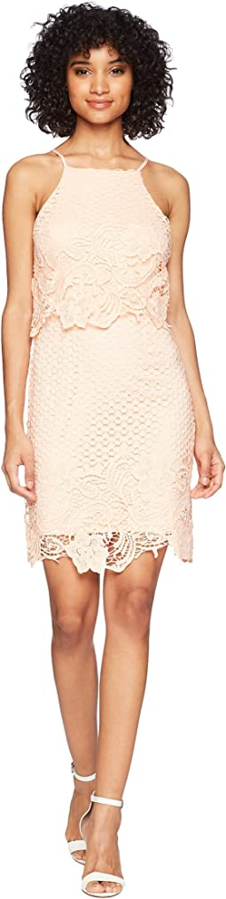 BB Dakota Bryn Bodycon Lace Dress