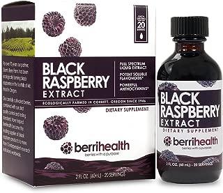Best black raspberry syrup Reviews