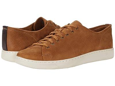 UGG Pismo Sneaker Low (Chestnut) Men