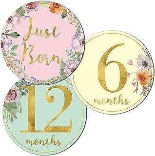 Newborn Baby Girl Gold Floral Milestone Stickers, 1st Year Belly Decals, Set of 12 Monthly Photo Props for Infant Onesie, Scrapbook Keepsake Shower Basket & Registry Gifts