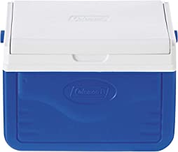 Best ice cooler box small Reviews