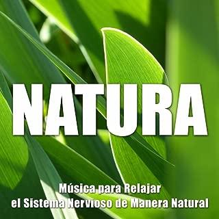 Natura New Age - Musica para Relajar el Sistema Nervioso de Manera Natural