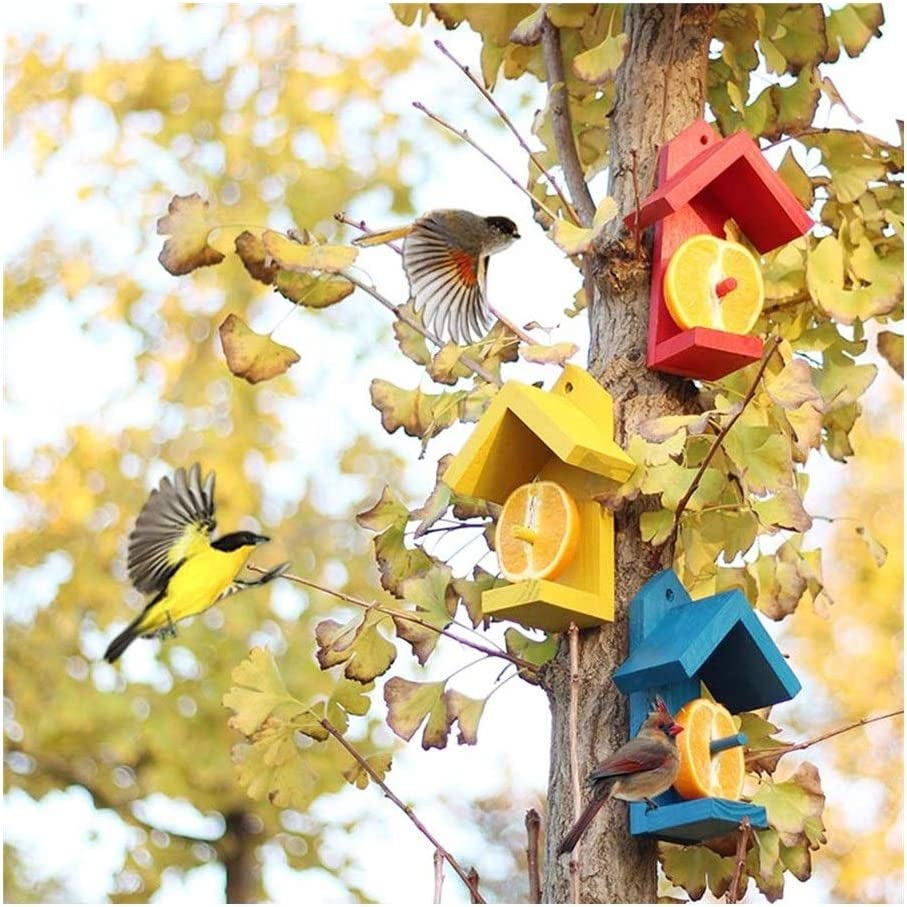 Japan Maker New Colorful Wooden National uniform free shipping Fruit Bird Hanging Outdoor Garde Feeder