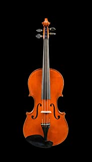 D Z Strad Violin Model 600 Full Size 4/4 with Dominant Strings, Bow, Case and Rosin (4/4 - Full Size)