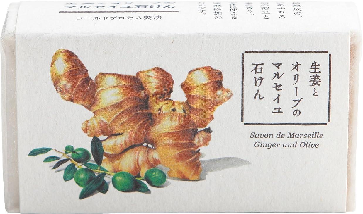 支配的出費増加するウェルコ 洗顔料 生姜とオリーブのマルセイユ石けん 80g