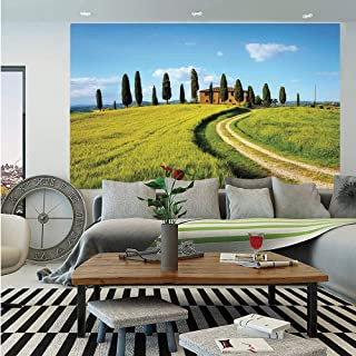Tuscan Wall Mural,Scenic Landscape of Village Greenery Trees Blue Sky Rustic House Image,Self-Adhesive Large Wallpaper for Home Decor 83x120 inches,Green and Light Blue