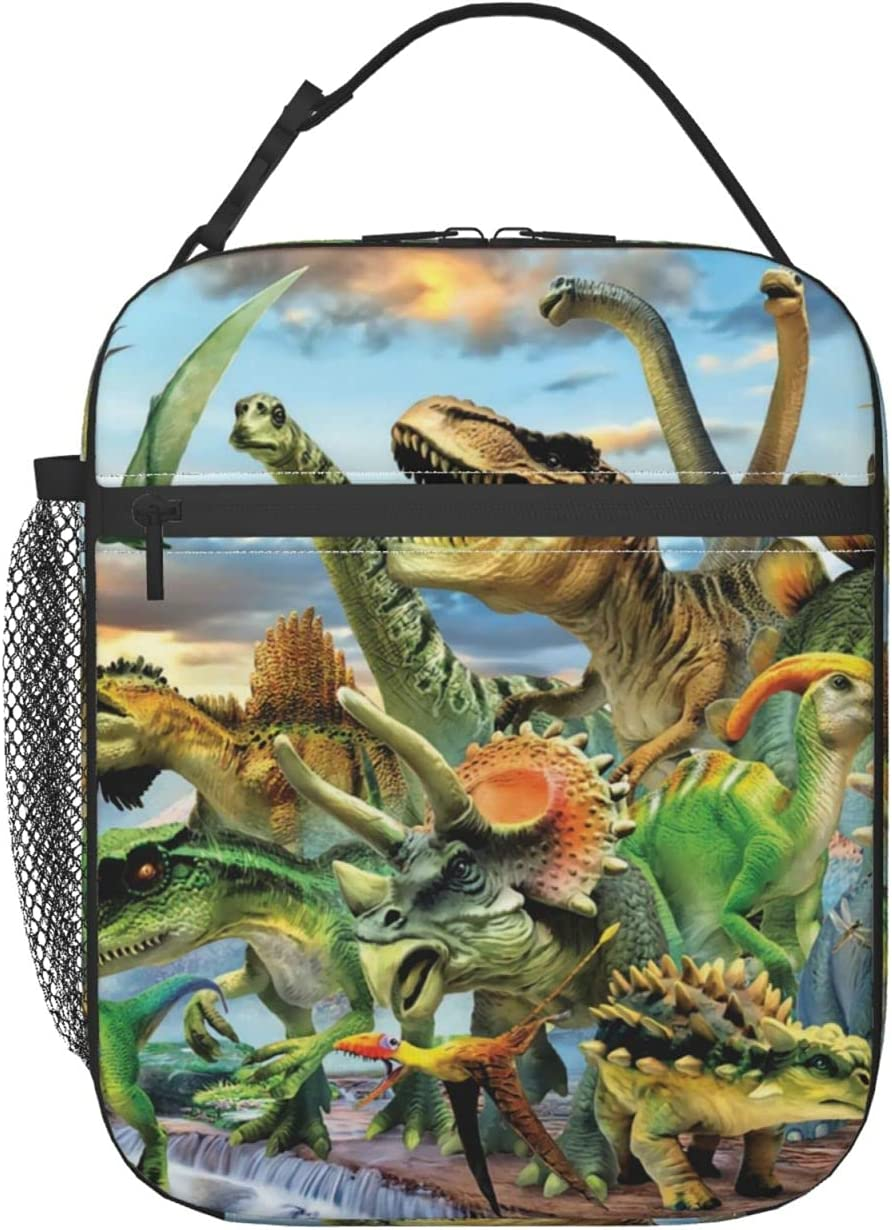 Dinosaur Lunch Box Portable Insulated Lunch Bag For Women Men Cooler Reusable Lunch Tote Bagpicnic Travel Outdoors