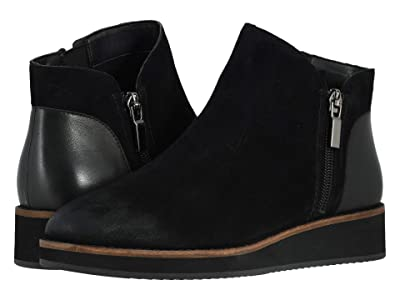 SoftWalk Wesley (Black Suede) Women