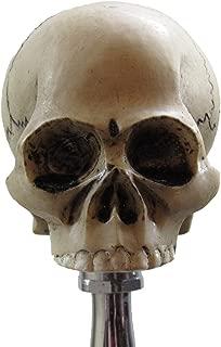 No Jaw Skull Head Shifter Shift Knob Rat Rod Lever