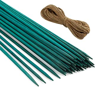 Pllieay 60 PCS 30cm Green Wood Plant Stake, Floral Plant Sup