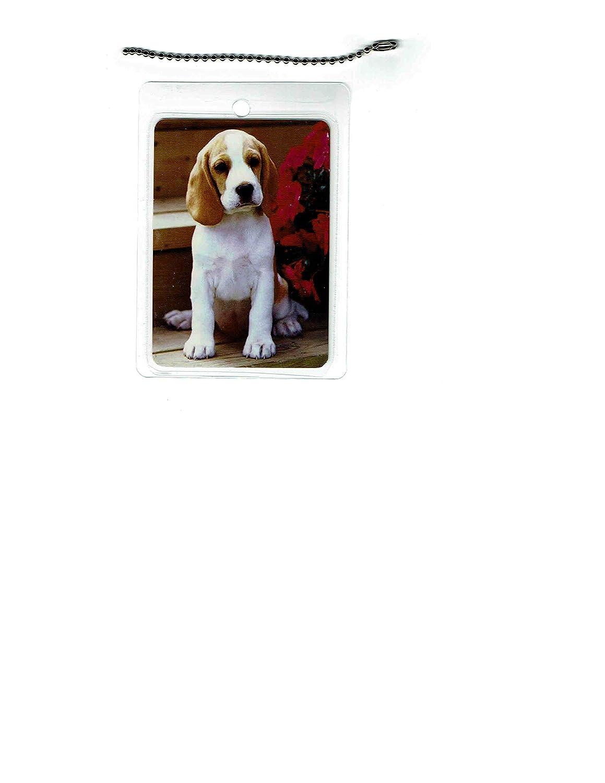 Beagle Dog Luggage Fees free Popular overseas Tag