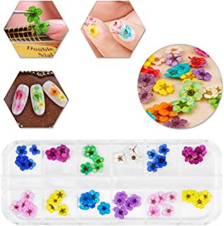 12 Colors Nail Dried Flowers 3D Nail Art Sticker, Natural Real Dry Flower, Flower Nail Design Art Decorations Decals Accessory Nail Supplies, Lovely Five Petal Flower Beauty Nail Stickers for Manicure