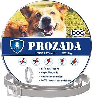 PROZADA Natural Collar Antiparasitario para Perros (8 Meses) Prevención de Pulgas y Garrapatas - con Extractos de Plantas ...