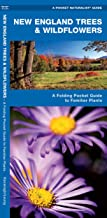 New England Trees & Wildflowers: A Folding Pocket Guide to Familiar Plants (Wildlife and Nature Identification)