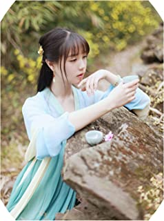 Chinese Costume Beautiful Dance Hanfu Costume Princess Chinese Hanfu Dress
