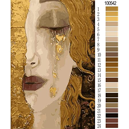 20 Inch Christmas Decor Decorations Gifts Diy Oil Paint By Number Kit,Indian Woman E5250 Wall Art Picture Drawing With Brushes 16 Without Frame