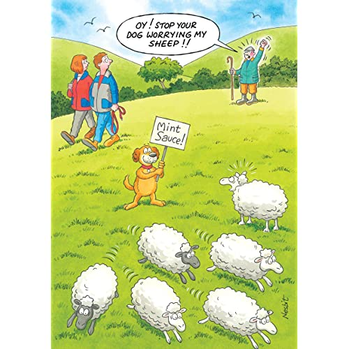 DOG WORRYING SHEEP FUNNY HUMOROUS BIRTHDAY CARD THE SIDE OF LIFE