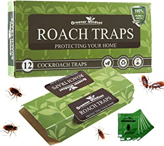 Best dahao cockroach killing bait Reviews