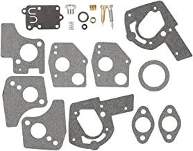 Hipa Carburetor Overhaul Kit for Briggs & Stratton 495606 494624