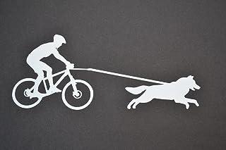 Amazon.es: antena bikejoring
