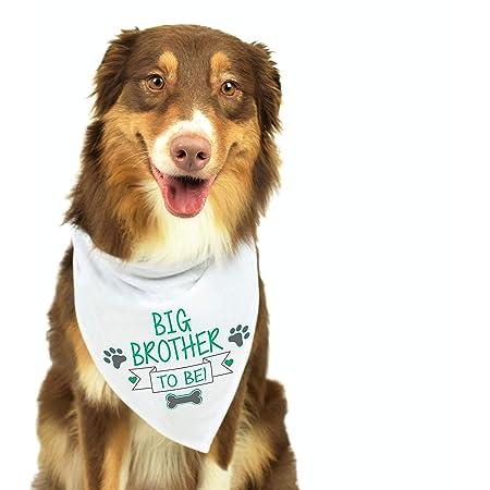 Baby Gender Reveal  Dog Bandana Baby Announcement