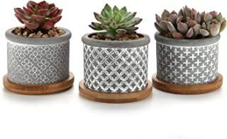 T4U 2.5 Inch Cement Succulent Planter Pot with Bamboo Tray Grey Set of 3, Small Concrete Cactus Plant Pot Indoor Herb Window Box Container for Home and Office Decor Birthday Wedding Christmas Gift