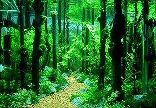 EMOURSCC 爬虫類水槽自然流木天然流木の装飾自然林支店テラリウムウッドアクアリウムオーナメント、4個