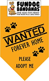 Wanted: Forever Home; Please Adopt Me Dog Bandana