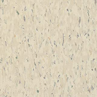 Armstrong MultiColor 12 in. x 12 in. Faire White Excelon Vinyl Tile (45 sq. ft. / case)
