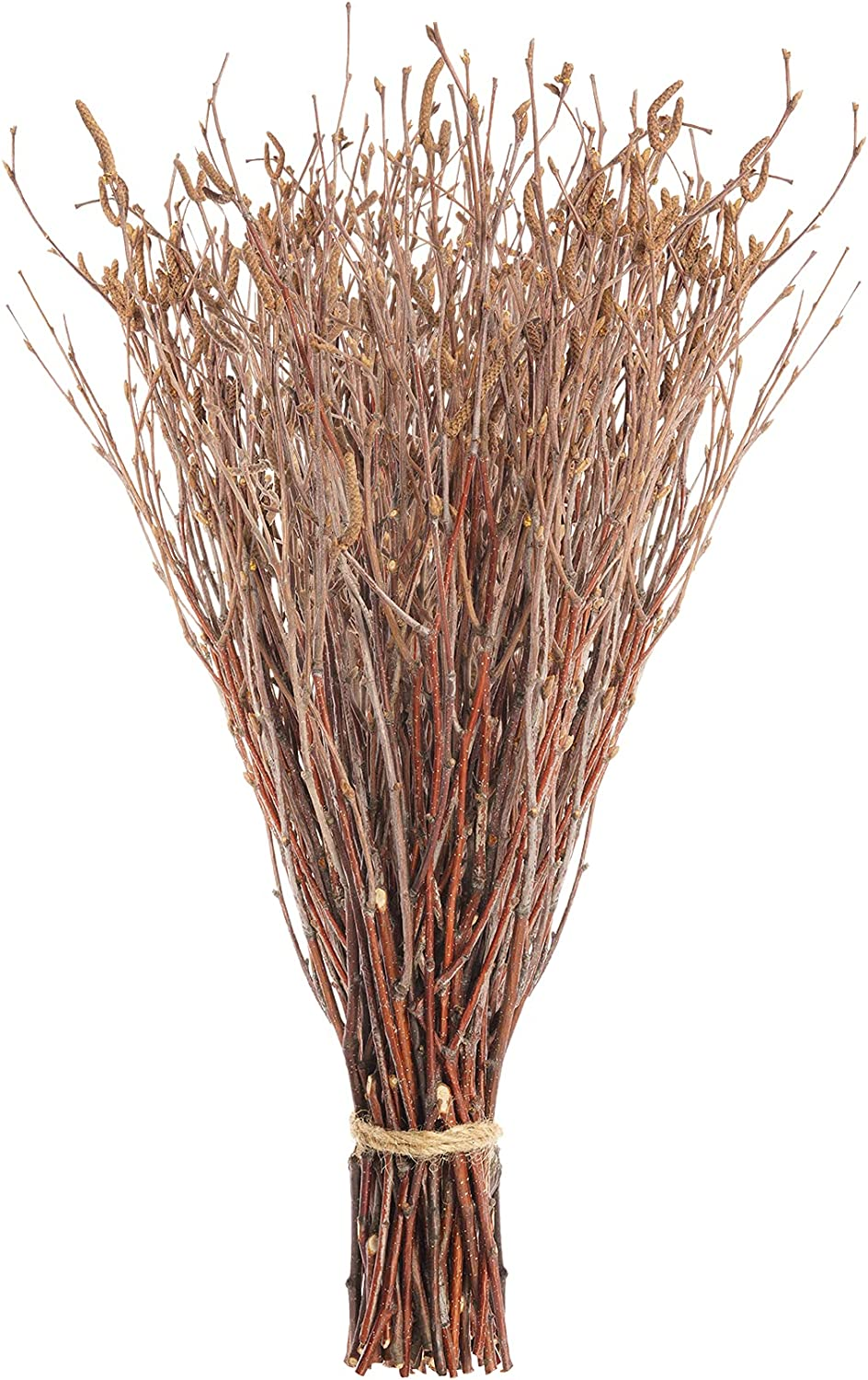 Birch Branches, 100% Natural Birch for Perfect Centerpieces, Birch Twigs for DIY Decor, Handmade Wreath or Home Decor, 50 PCs Attentively Packed