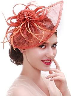 Amazon.es: lino - Cuidado del cabello: Belleza