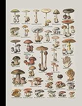 Vintage botanical illustration Journal: Poisonous fungi - The large botanical journal for the mycology lover