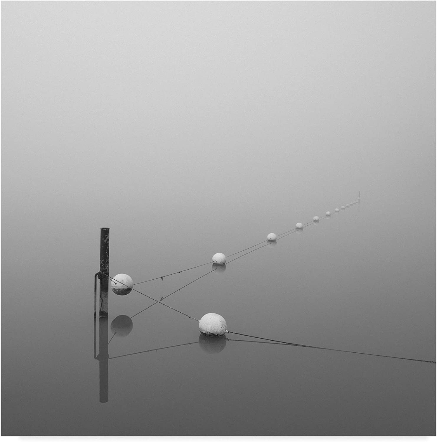 Trademark Fine Art Suspension by Nicholas Bell Photography, 14x14-Inch