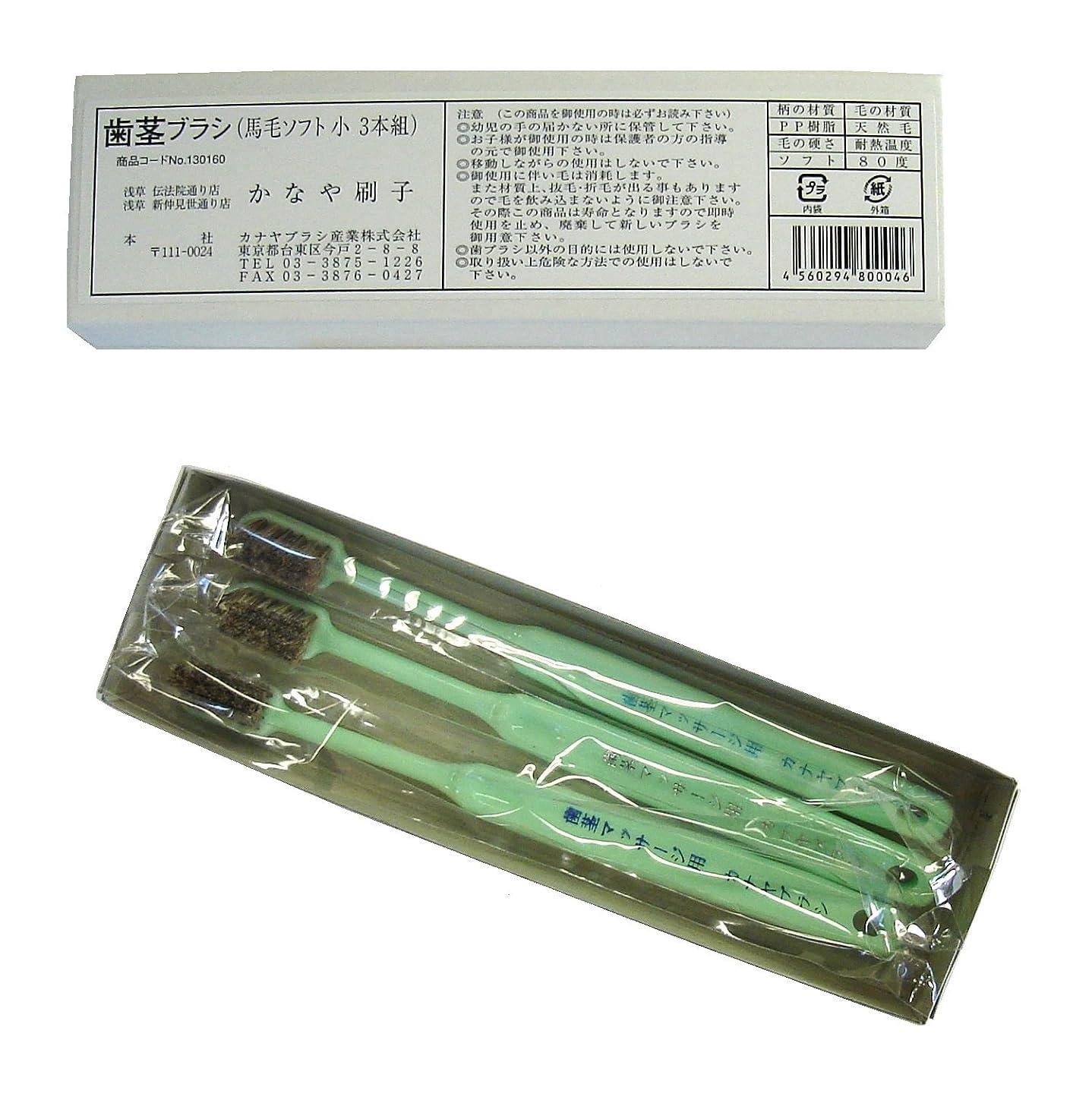 アセ想像するあざ馬毛歯茎ブラシ(3本入り) 絶品! カナヤブラシ製品 毛質:超ソフト