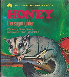 Honey the sugar glider