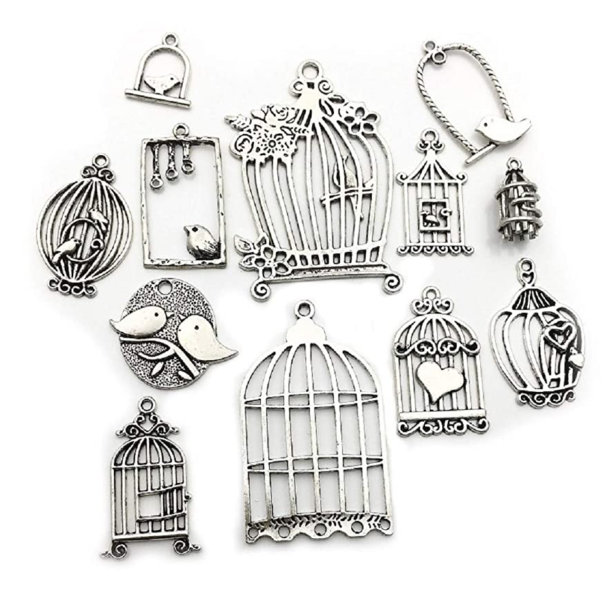100g (About 36pcs) Mixed Antique Silver Birdcage Charms Pendants for Crafting, Jewelry Findings Making Accessory for DIY Necklace Bracelet (Antique Silver Bird Cage Charms)