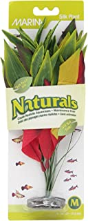 Marina Naturals Dracena Silk Plant in Red/Yellow