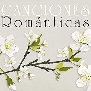 Best canciones romanticas de banda Reviews