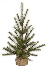 Best o christmas tree song in german Reviews